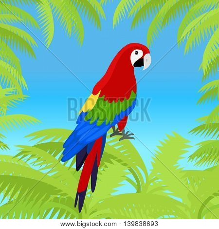 Ara parrot vector frame. Birds of Amazonian forests in flat design illustration. Fauna of South America. Beautiful Ara parrots for icons, posters, childrens books illustrating. Isolated on white.