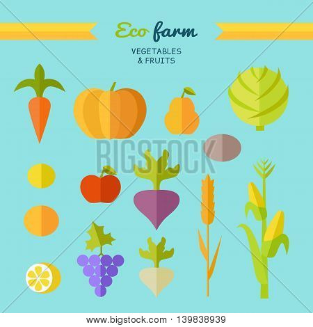 Set of fruits vegetables vector. Flat design. Eco farm. Carrot, pumpkin, pear, apple, cabbage, beets, radishes, lemon grapes corn potatoe illustrations for conceptual banners icons infographic