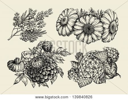Flowers. Hand-drawn sketch of chamomile, mimosa, hortensia, dahlia Vector illustration