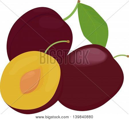 Ripe whole plums fruit with leaves isolated on white background. vector illustration.