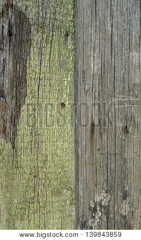 Aged wooden planks covered in weathered paint