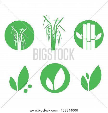 Sugar cane icons set vector illustration eps10