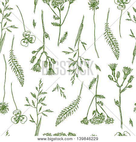 Beautiful hand drawn vector illustration sketching of wildflowers. Boho style floral seamless pattern. Use for postcards, print for t-shirts, posters, wedding invitation, tissue, linens