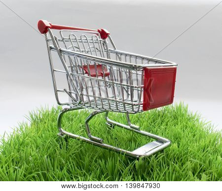 Shopping Cart On The Lawn With Space For Text
