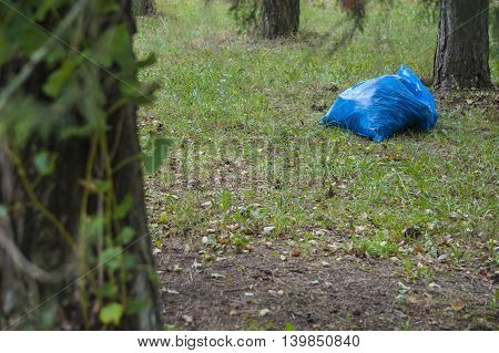 Cleaning of in the woods in blue plastic bag