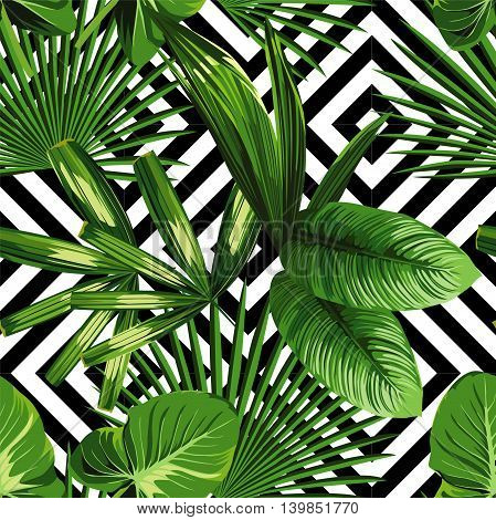 Print summer exotic jungle plant tropical palm leaves. Pattern seamless floral vector on the black white geometric background. Nature wallpaper.