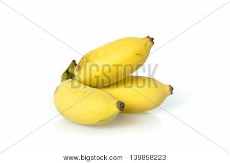 Cultivated Banana