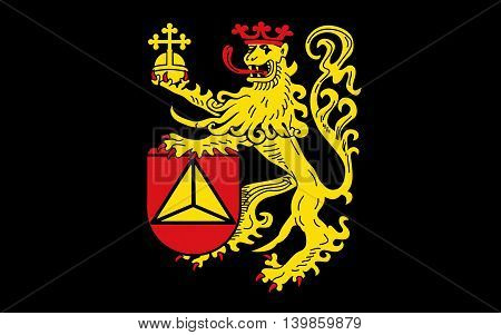 Flag of Frankenthal is a town in southwestern Germany in the state of Rhineland-Palatinate.