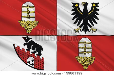 Flag of Salzland is a district in the middle of Saxony-Anhalt Germany. 3d illustration