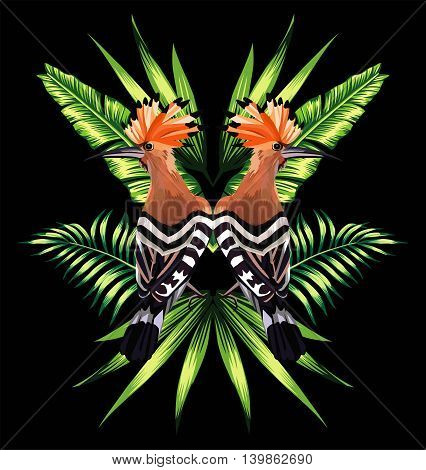 Beautiful bird hoopoe with tropical banana leaves in mirror image on black background. Vector jungle floral wallpaper