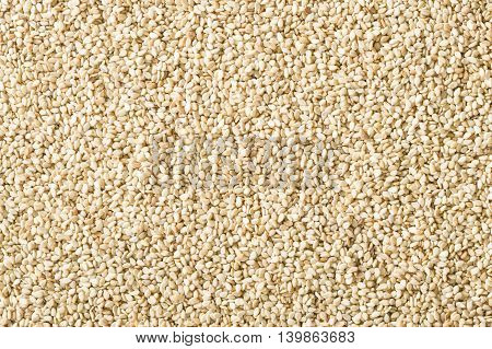 Sesame seeds (Sesame indicum) filled as background