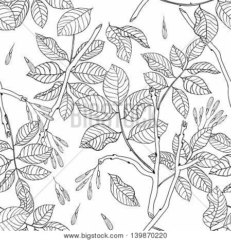 Vector hand drawn black and white floral seamless pattern of ash tree for textile fabric postcards wallpaper scrapbooking and others