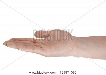 Palm up showing something beautiful woman's skin yellow manicure. Isolated on white background.