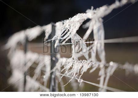Plastic On Fence