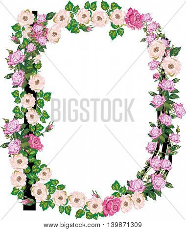 illustration with letter D from rose and brier flowers isolated on white background