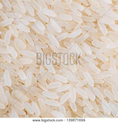 White Long Rice Background, Uncooked Raw Cereals, Macro Close up Detail Texture