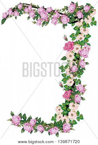 illustration with letter J from rose and brier flowers isolated on white background