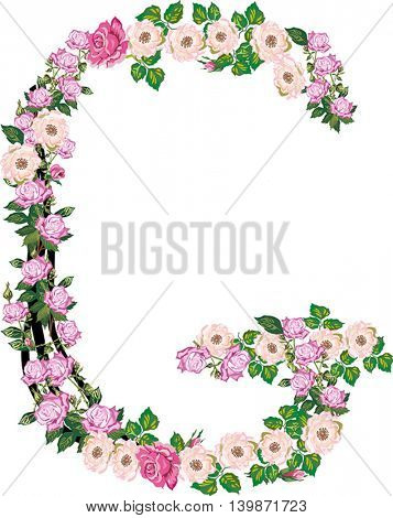 illustration with letter G from rose and brier flowers isolated on white background