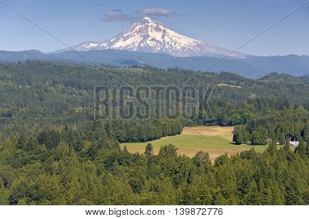 Jonsrud Viewpoint forest and Mt. Hood in Sandy Oregon.