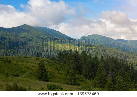 Cloudy morning in the Carpathian mountains. Mountain meadows and slopes covered with fir forest. Wonderful landscape.