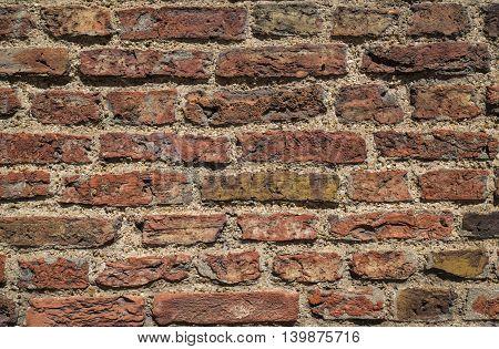 A close-up shot of a brick wall.