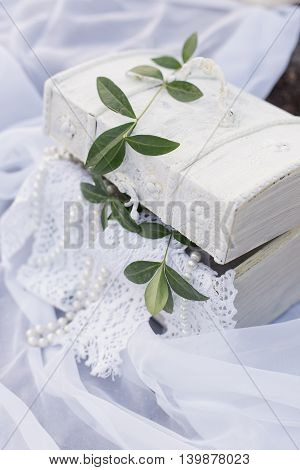beautiful white casket in a vintage style of standing on a white cloth with a sprig of a tree on the cover