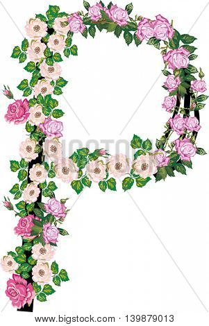 illustration with letter P from rose and brier flowers isolated on white background