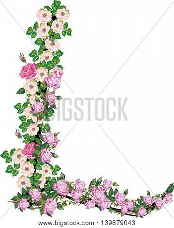 illustration with letter L from rose and brier flowers isolated on white background