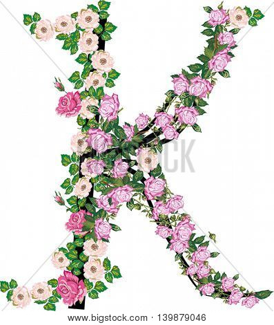 illustration with letter K from rose and brier flowers isolated on white background