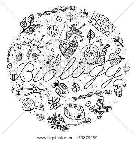 Hand drawn biology pattern on a white background. Editable vector illustration. Scientific typography. Text-book, brochure or book cover design idea