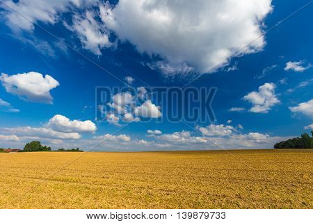 Harvested Wheat Fields And Dramatic Blue Sky In July, Belgium