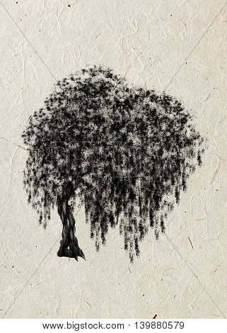 Willow. Drawing tree on a beige rice paper. Black silhouette wood.