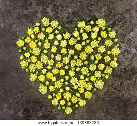 Heart symbol made of small linden flowers on dark stone background. Flat lay top view