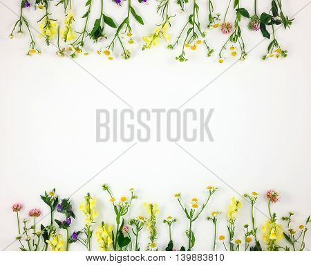 Colorful Bright Frame Made Of Meadow Flowers. Flay Lay, Top View