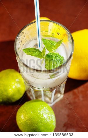 Fresh water with lemon, lime and mint
