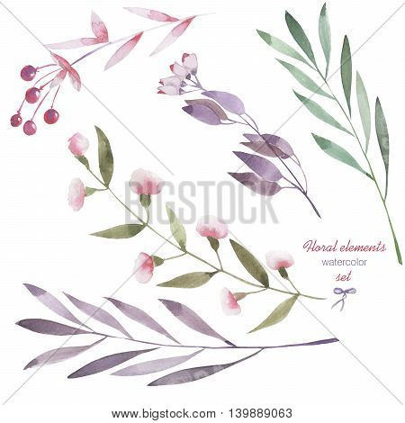 Floral set with the isolated watercolor branches, flowers and berries, hand drawn on a white background, for self-compilation of the bouquets and ornaments
