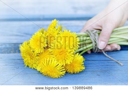 a bouquet of yellow dandelions in hand on background blue benches / date with flowers
