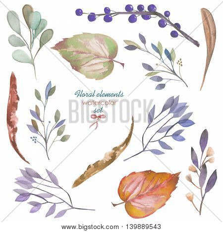 Floral set with the isolated watercolor branches and leaves, hand drawn on a white background, for self-compilation of the bouquets and ornaments