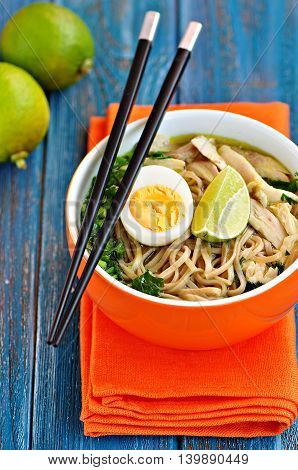 Chicken noodle soup with green onion, ginger, coriander and chili pepper. Asian cuisine.