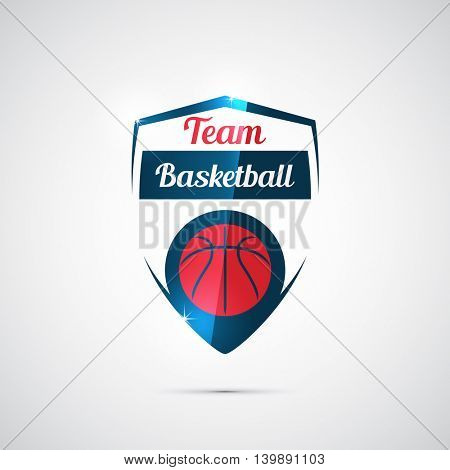 Modern vector logo for a basketball team