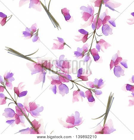 Seamless pattern with the isolated watercolor purple and violet Delphinium (Larkspur) flower, hand drawn on a white background