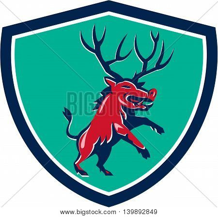 Illustration of a wild pig boar razorback with antlers prancing viewed from front set inside crest shield on isolated background done in retro style.