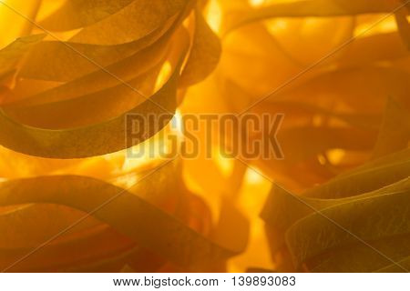 Macro closeup photography of italian pasta - top view