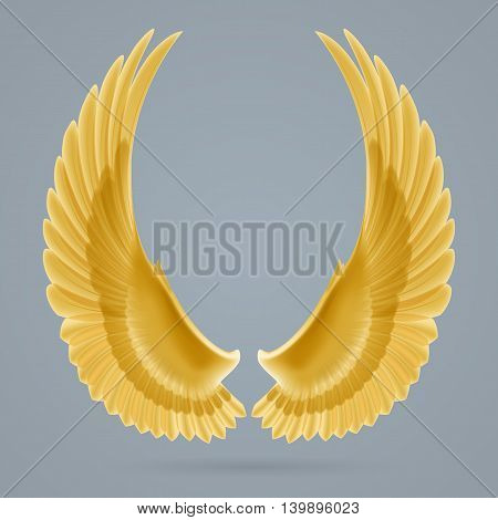 Inspiring yellow wings up drawn separately on a gray background