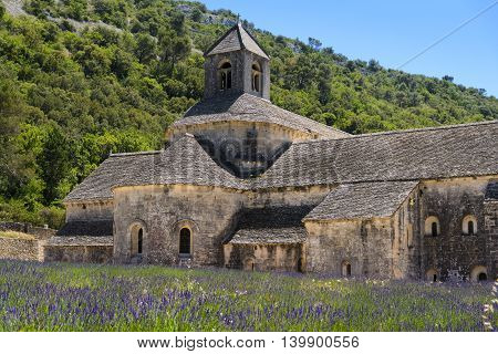 Abbaye de Senanque and lavender field, France