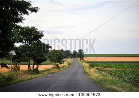 Long Highway road between agricultural fields photo