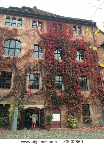 Germany, October 18, 2015, Nuremberg, Bavaria - Beautiful city buildings with climbing vines  in Fall