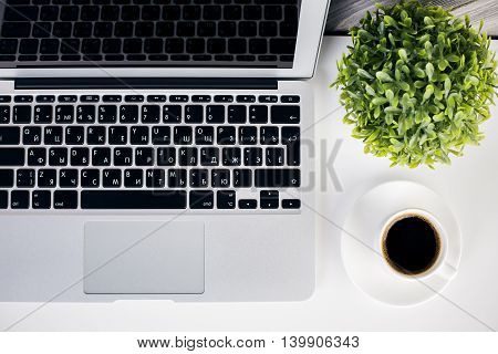 Laptop, Coffee Cup And Plant