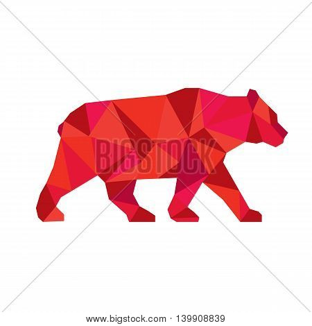 Low polygon style Illustration of an American black bearUrsus americanus a medium-sized bear native to North America walking viewed from side set on isolated white background.
