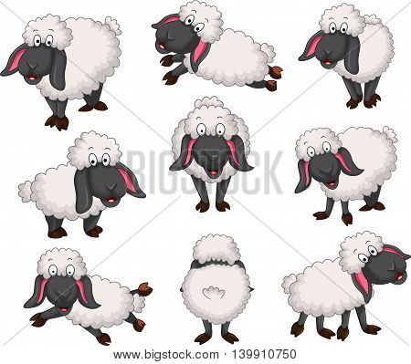 Nice set of vector cartoon sheep for your design